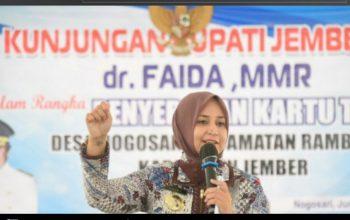 Petani Diminta Tidak Resah, Pemkab Jember Menjamin Ketersediaan Pupuk Bersubsidi